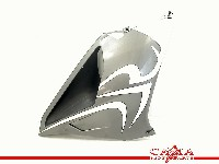 Aprilia RSV 1000 R (+Factory) 2006-2010 (RSV1000) FAIRING RIGHT 2008  110112DX